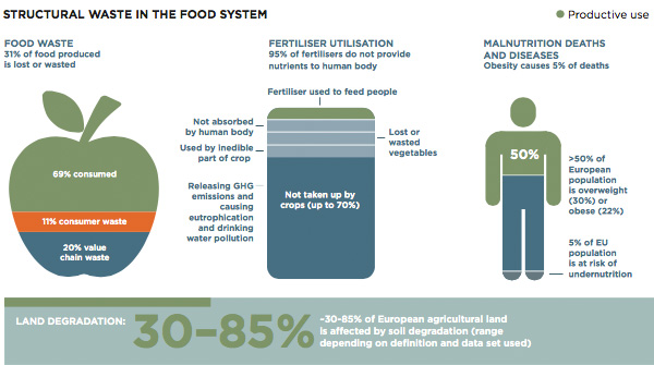 Structural waste in food system