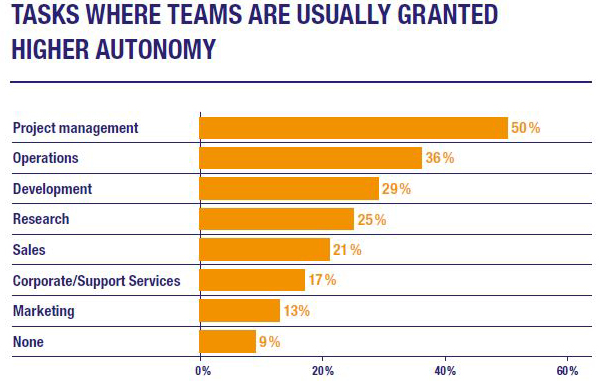 Tasks Where Teams Are Usually Granted Higher Autonomy