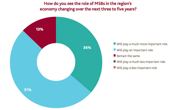The role of MSBs in the Bristol region