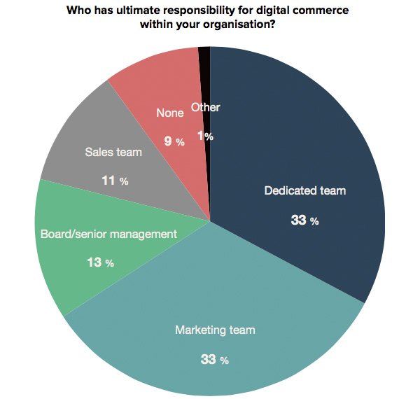 Who has ultimate responsibility for digital commerce