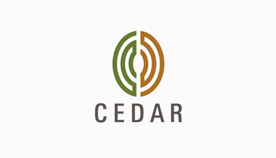 Consulting firm in the UK: Cedar Management Consulting